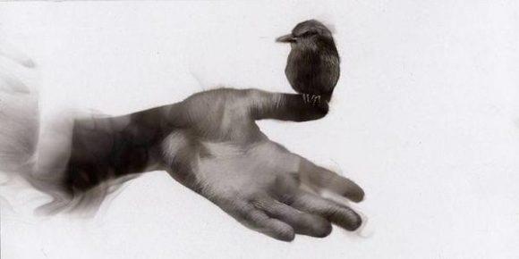 Илюстрация: http://jenite.bg