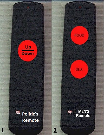 Politic's Remote and Men's Remote