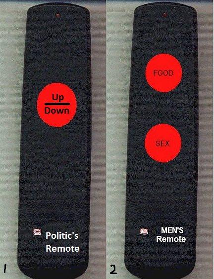 Politic's Remote and Men's Remote