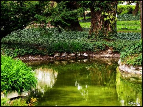 Кът от Цар Симеоновата градина. Снимка: http://photo-forum.net