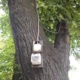 За какво служат дърветата в градината... Снимка: Фейсбук