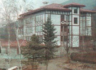 Сараят на Доган в Бояна. Снимка: kircaalihaber.com