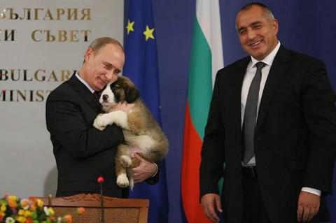 Putin2014a11