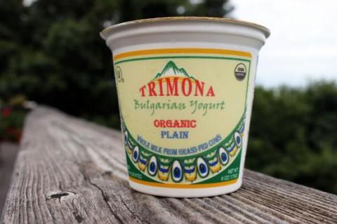 trimona_yogurt