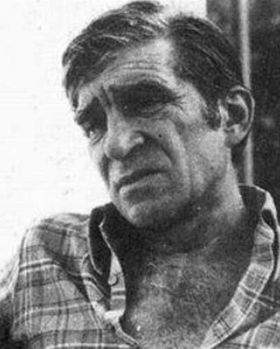 Мирослав Антич