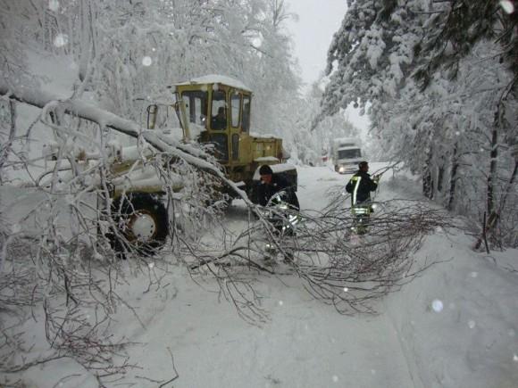 Снегът и падналите клони блокираха много пътища и в Кърджалийска област. Снимка: БГНЕС
