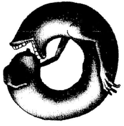 Илюстрация: otzvuk.com
