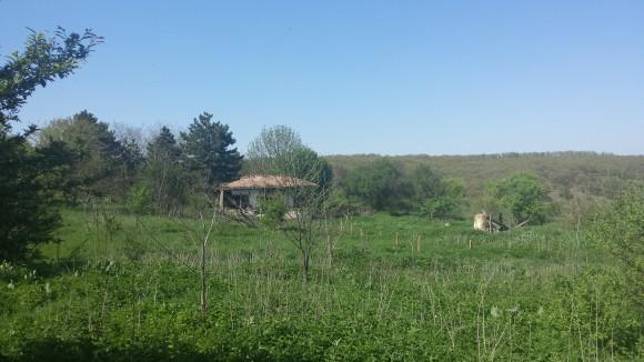 Останките от село Брестница