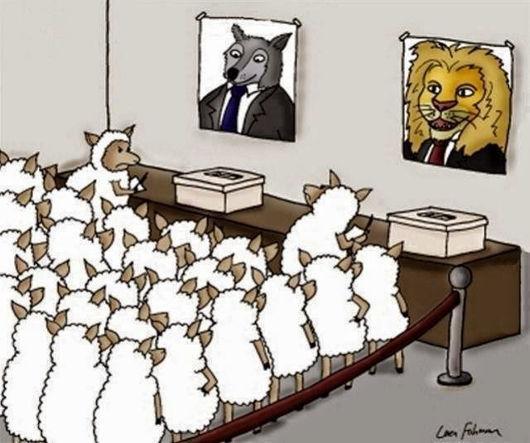 Карикатура: budnaera.com