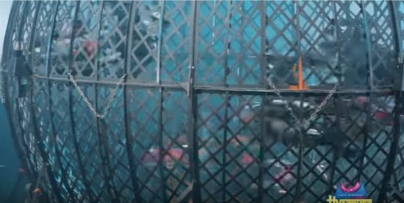Снимка: Скрийншот от видео на Circo Hermanos Vazquez